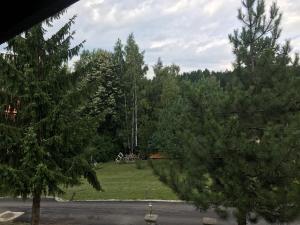 Kuca na Zlatiboru, Prázdninové domy  Zlatibor - big - 6