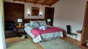 Lodge Y Cabañas Los Cisnes, Lodges  Valdivia - big - 3