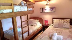 Lodge Y Cabañas Los Cisnes, Lodges  Valdivia - big - 46