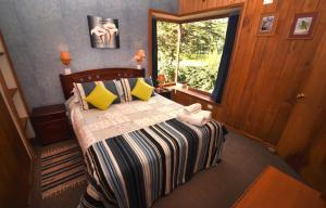 Lodge Y Cabañas Los Cisnes, Lodges  Valdivia - big - 9