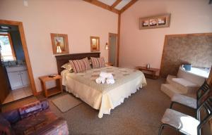 Lodge Y Cabañas Los Cisnes, Lodges  Valdivia - big - 18