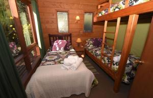 Lodge Y Cabañas Los Cisnes, Lodges  Valdivia - big - 41