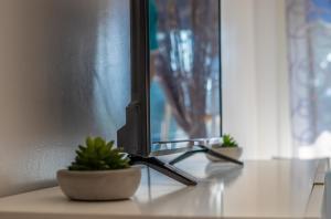 ** L Ascot - Grand Studio - Pk +Wifi, Апартаменты  Кань-сюр-Мер - big - 8