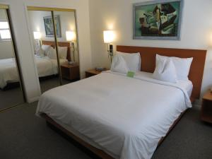 One-Bedroom Suite with King Bed