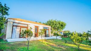 Icons Sea of Crete, Villas  Malia - big - 31