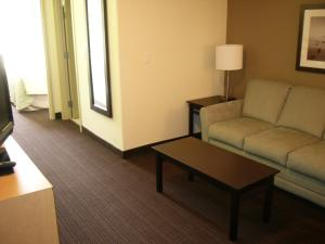 Premier King Suite with Sofa Bed - Non-Smoking