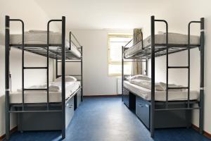 ドミトリールーム(4人部屋) 男女共用 シングルベッド1名分
