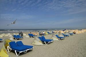 Life@Sea(Zandvoort)
