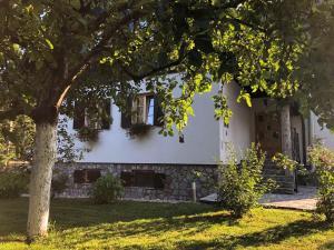Pansion House Prijeboj, Guest houses  Jezerce - big - 48