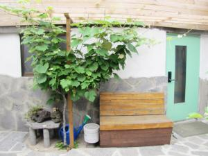 Dumbhouse Ouido, Prázdninové domy  Jeju - big - 41