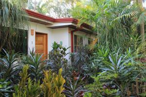 Costa Verde Inn, Aparthotels  San José - big - 32