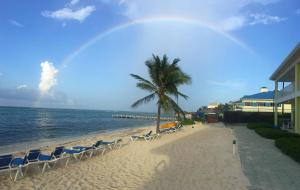 Reef Resort Beach Front Condos