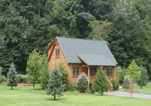 Baird's Creek Cabin, Дома для отпуска  Poplar Grove - big - 9