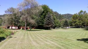 Baird's Creek Cabin, Dovolenkové domy  Poplar Grove - big - 24