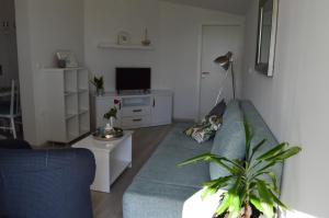 Rooms & Apartments Villa Anka, Апартаменты  Тучепи - big - 85