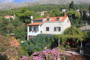 Apartment Dubrovnik 8581a, Ferienwohnungen  Dubrovnik - big - 19
