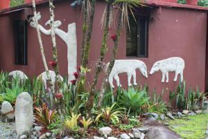 Talamanca Reserve, Отели  Rivas - big - 19