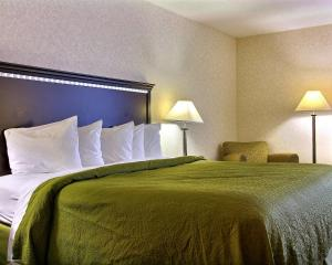 Quality Inn & Suites Mansfield, Hotels  Mansfield - big - 7