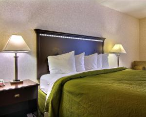 Quality Inn & Suites Mansfield, Hotels  Mansfield - big - 3