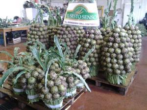Agriturismo Il Sesto Senso, Farmy  Ladispoli - big - 40