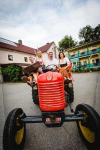 Gasthof Oberer Gesslbauer, Hotels  Stanz Im Murztal - big - 29