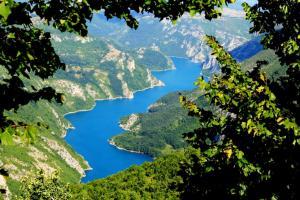 Privatni smještaj Tijanić, Pensionen  Plužine - big - 61
