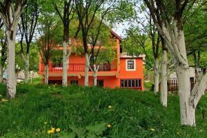 Privatni smještaj Tijanić, Pensionen  Plužine - big - 53