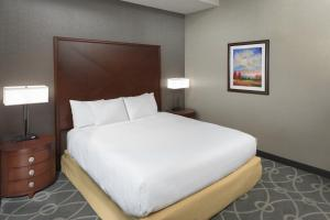 DoubleTree by Hilton Biltmore/Asheville, Hotels  Asheville - big - 13