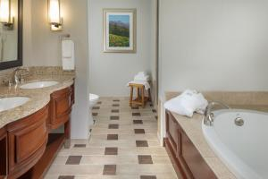 DoubleTree by Hilton Biltmore/Asheville, Hotels  Asheville - big - 27