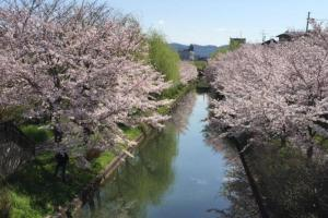 AH House in Shinmachi 2478, Ferienwohnungen  Kyoto - big - 15