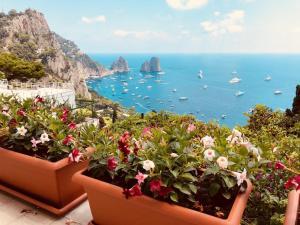 Fantastica villa con vista sui faraglioni - AbcAlberghi.com