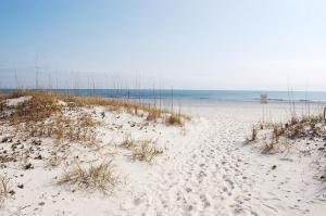 Ocean Reef 107 Condo, Appartamenti  Gulf Shores - big - 23
