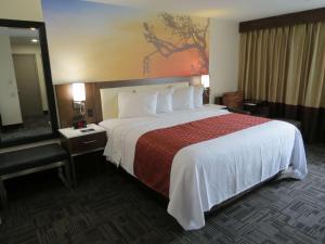 Best Western Premier Milwaukee-Brookfield Hotel & Suites, Hotels  Brookfield - big - 59