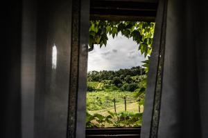 Agriturismo Fattoria Di Gratena, Agriturismi  Pieve a Maiano - big - 113