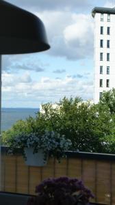 Apartament Horizon, Ferienwohnungen  Gdynia - big - 9