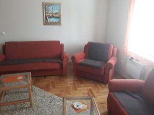 Apartments Tofilovic, Apartments  Zlatibor - big - 42