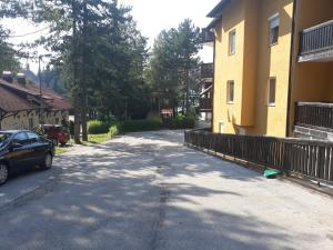 Apartments Tofilovic, Apartments  Zlatibor - big - 48