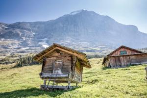 Aspen Alpine Lifestyle Hotel, Hotely  Grindelwald - big - 2