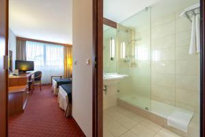 Mercure Karpacz Skalny, Hotel  Karpacz - big - 11