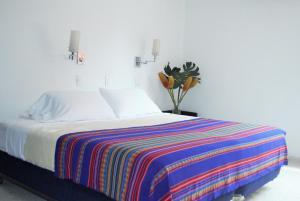 Casa Santa Mónica, Hotel  Cali - big - 62