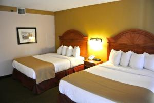 Queen Room with Two Queen Beds - Pool View