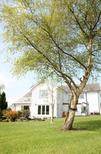 Capernwray House, Vendégházak  Carnforth - big - 18