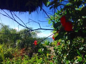Cabana da Praia, Prázdninové domy  Caraíva - big - 20