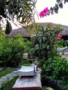 Cabana da Praia, Prázdninové domy  Caraíva - big - 31