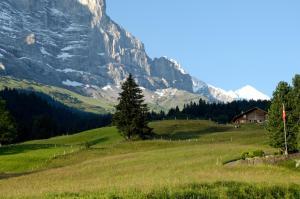 Aspen Alpine Lifestyle Hotel, Hotely  Grindelwald - big - 30