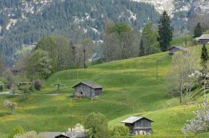 Aspen Alpine Lifestyle Hotel, Hotely  Grindelwald - big - 7