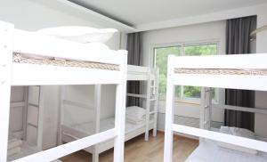2 Beds in 6-Bed Female Dormitory Room