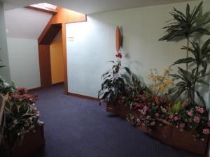 Ségala Plein Ciel, Hotely  Baraqueville - big - 19