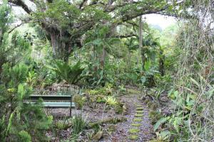 Talamanca Reserve, Отели  Rivas - big - 91