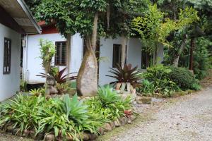 Talamanca Reserve, Отели  Rivas - big - 55